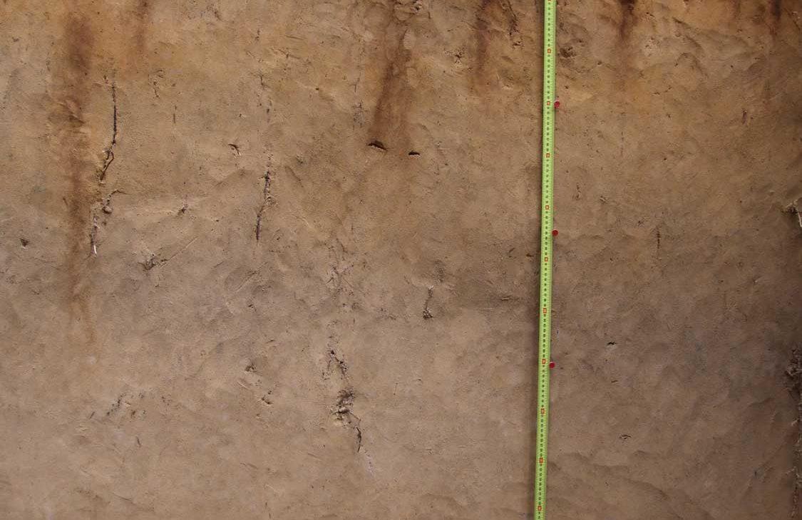 geologine ataskaita grunto tyrimo kaina