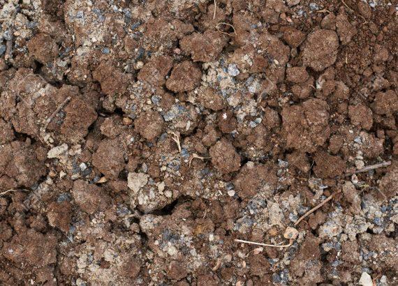 geologine grunto sudetis dirvozemio ph
