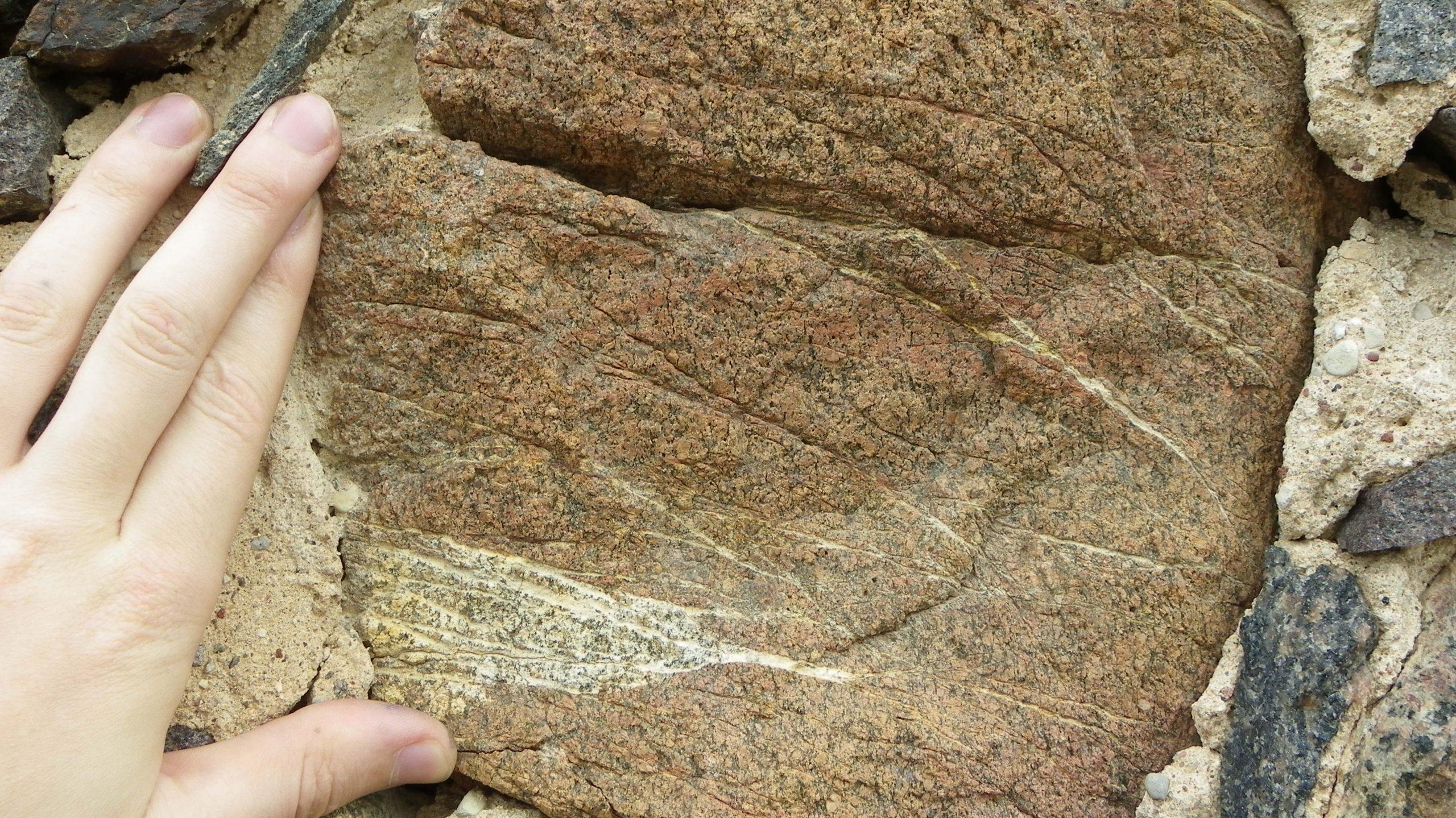 geologija giasociacija